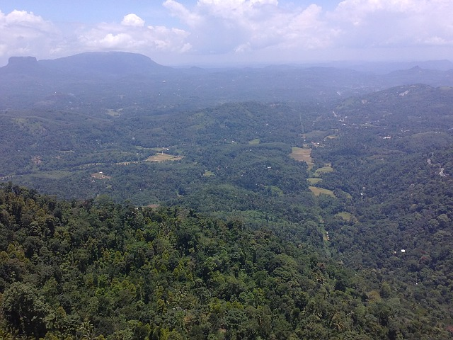 view-from-rock-177430_640